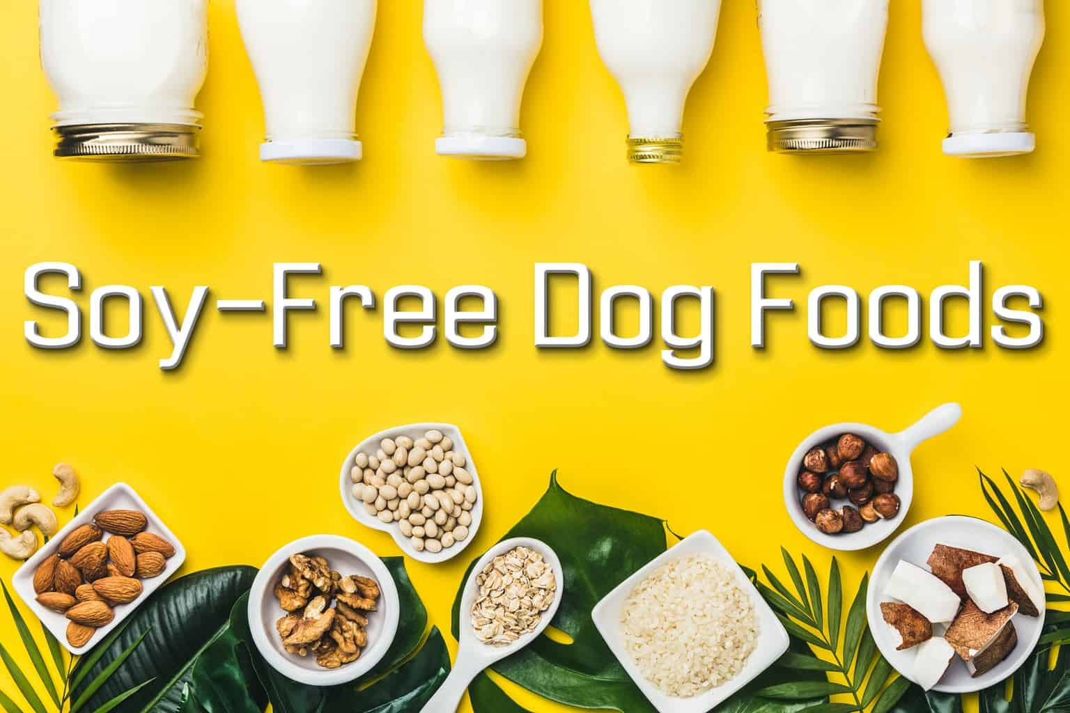 Soy Free Dog Foods