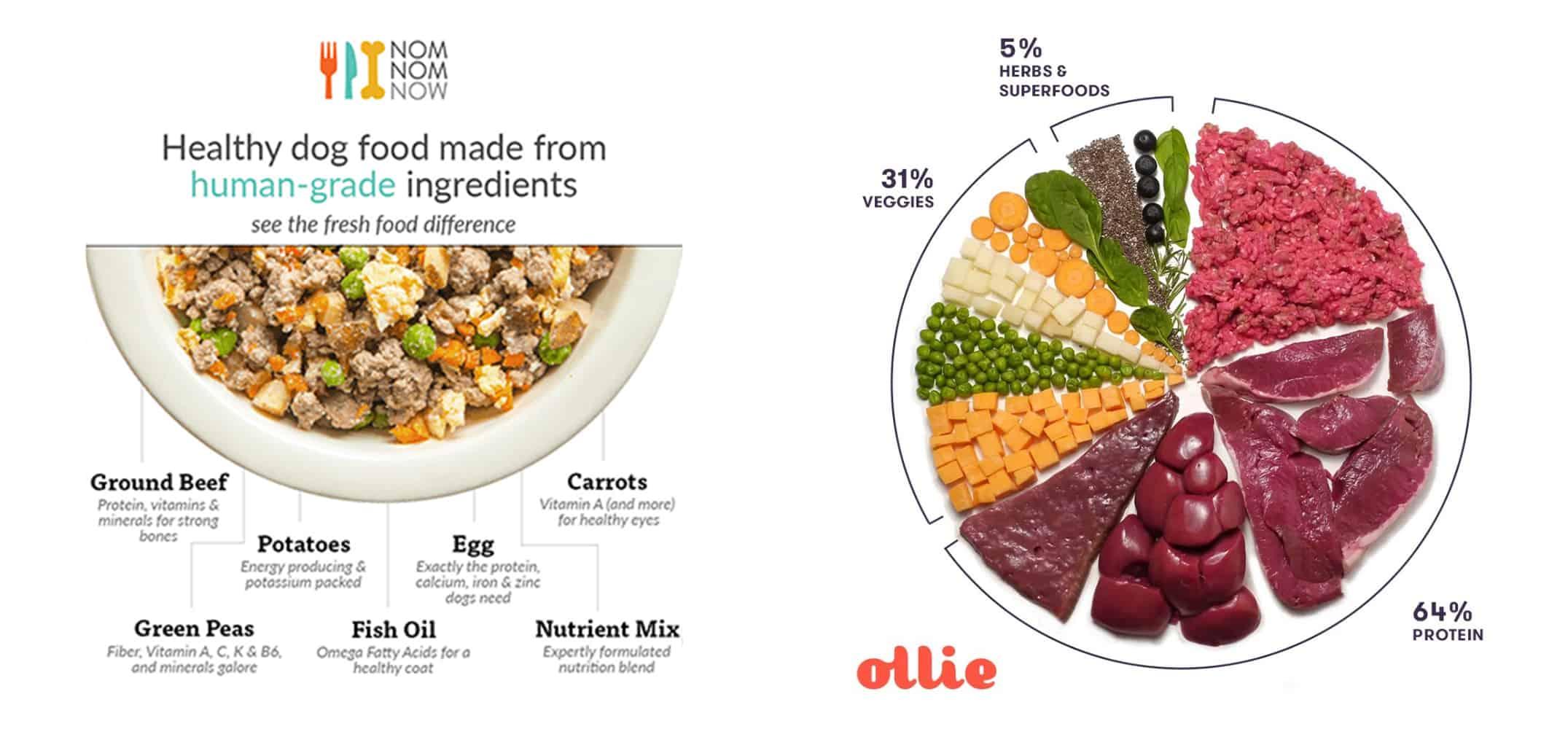 Nom Nom vs. Ollie Dog Food: Our 2020 Comparison 9