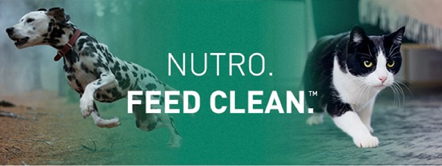 Nutro Dog Food: 2021 Review, Recalls & Coupons 14