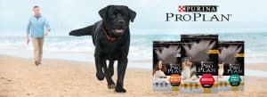 10 Best (Healthiest) Dog Foods without Peas & Legumes in 2020 28