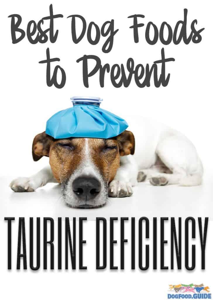 10 Best (Healthiest) Dog Foods to Prevent Taurine Deficiency 1