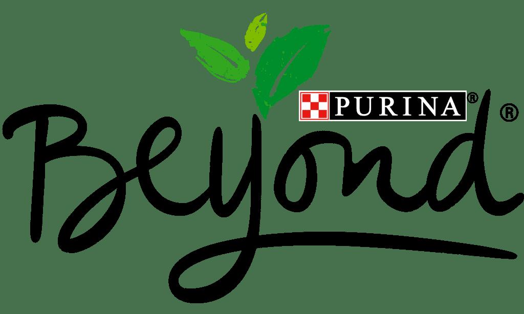 purina beyond dog food
