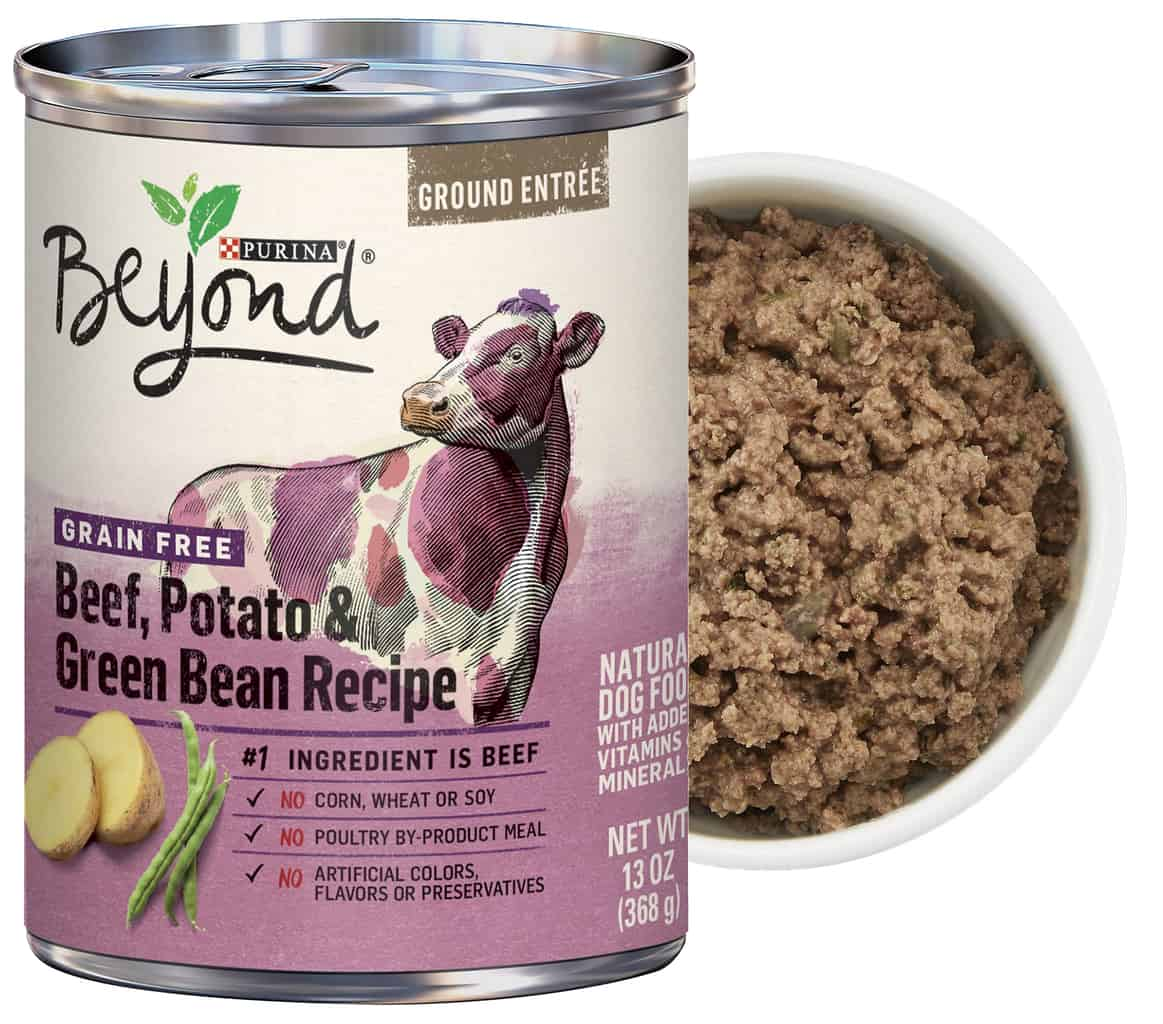 Purina Beyond Dog Food Review 2021: Best Budget Option? 19
