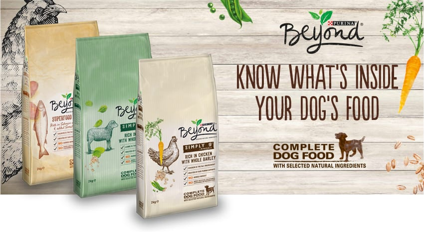 purina beyond dog food review