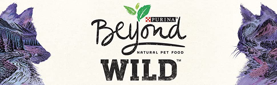 Purina Beyond Dog Food Review 2021: Best Budget Option? 29