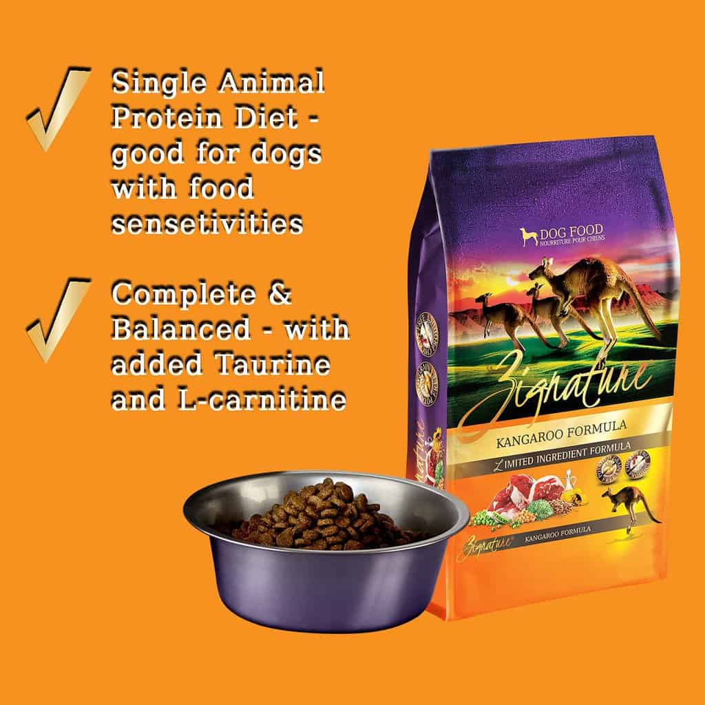 Zignature Dog Food Review 2020: Best Limited Ingredient Food? 2