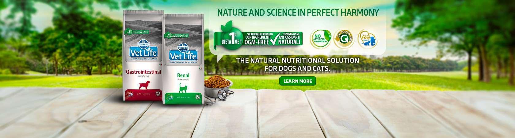Farmina Dog Food Reviews, Recalls & Coupons [year] 23