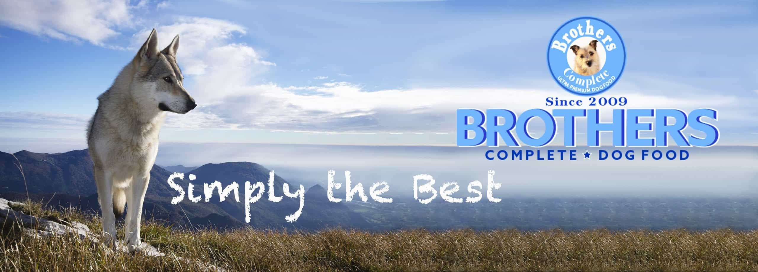 brothers complete dog food reviews