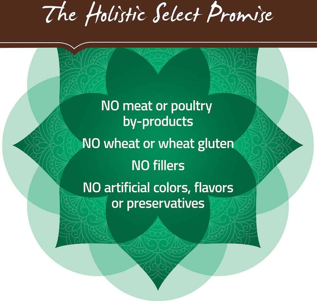 holistic select dog food
