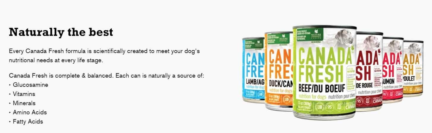 Canada Fresh Dog Food: 2021 Reviews, Recalls & Coupons 4