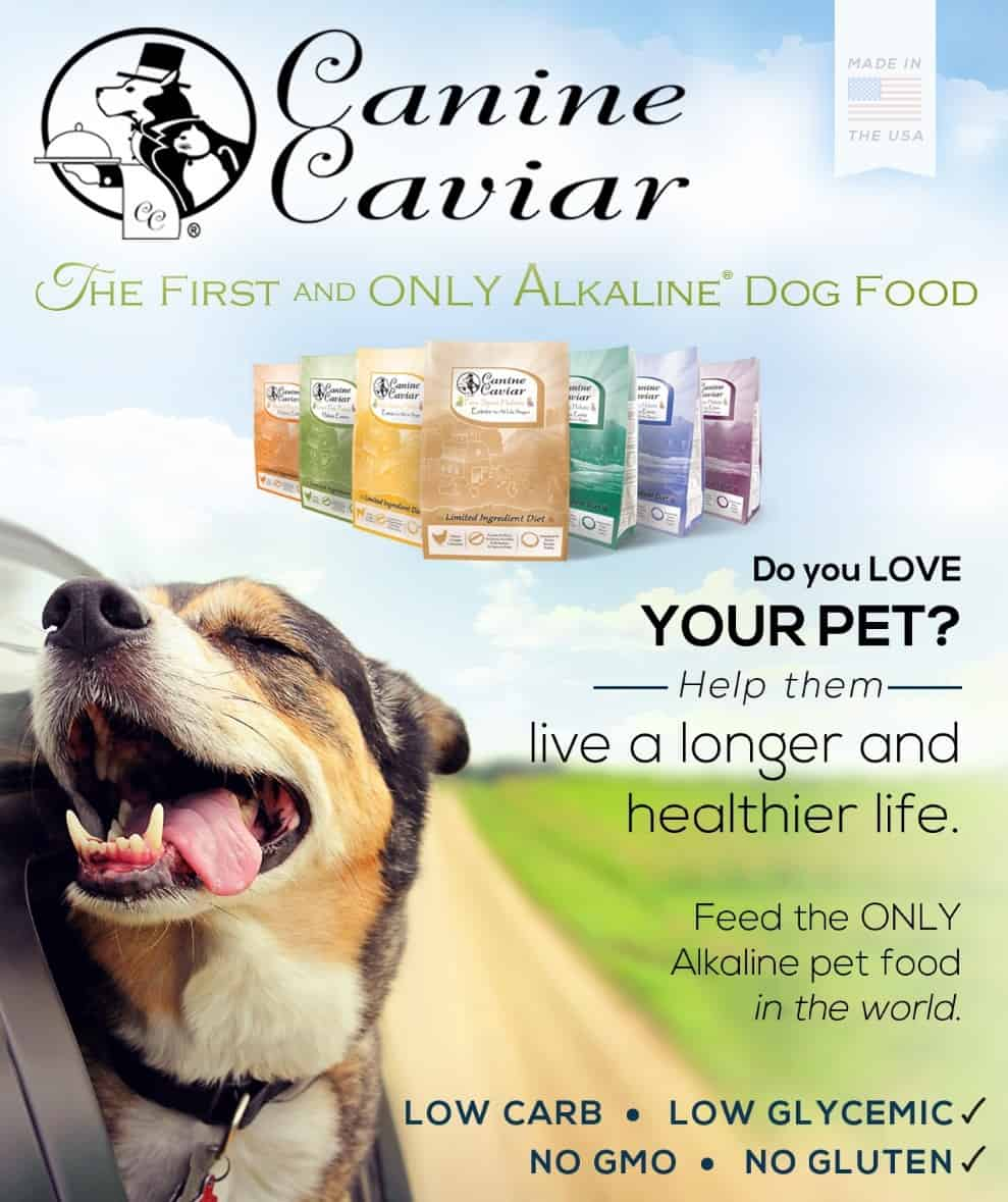 canine caviar dog food