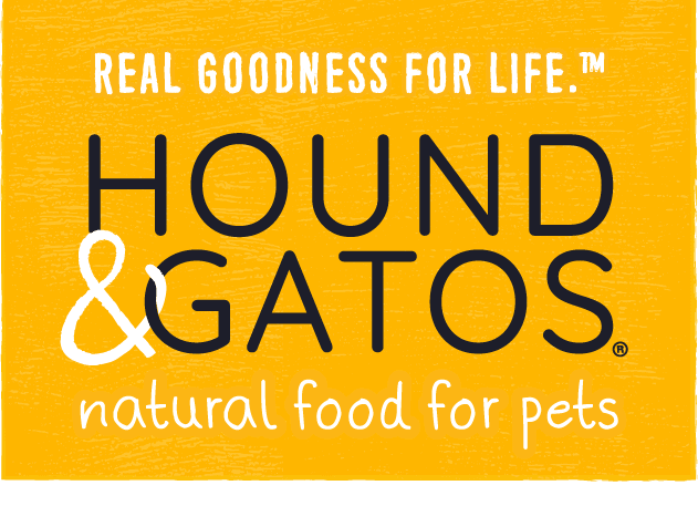 Healthiest Dog Food 2021: 20 Brands Offering Premium Products 10