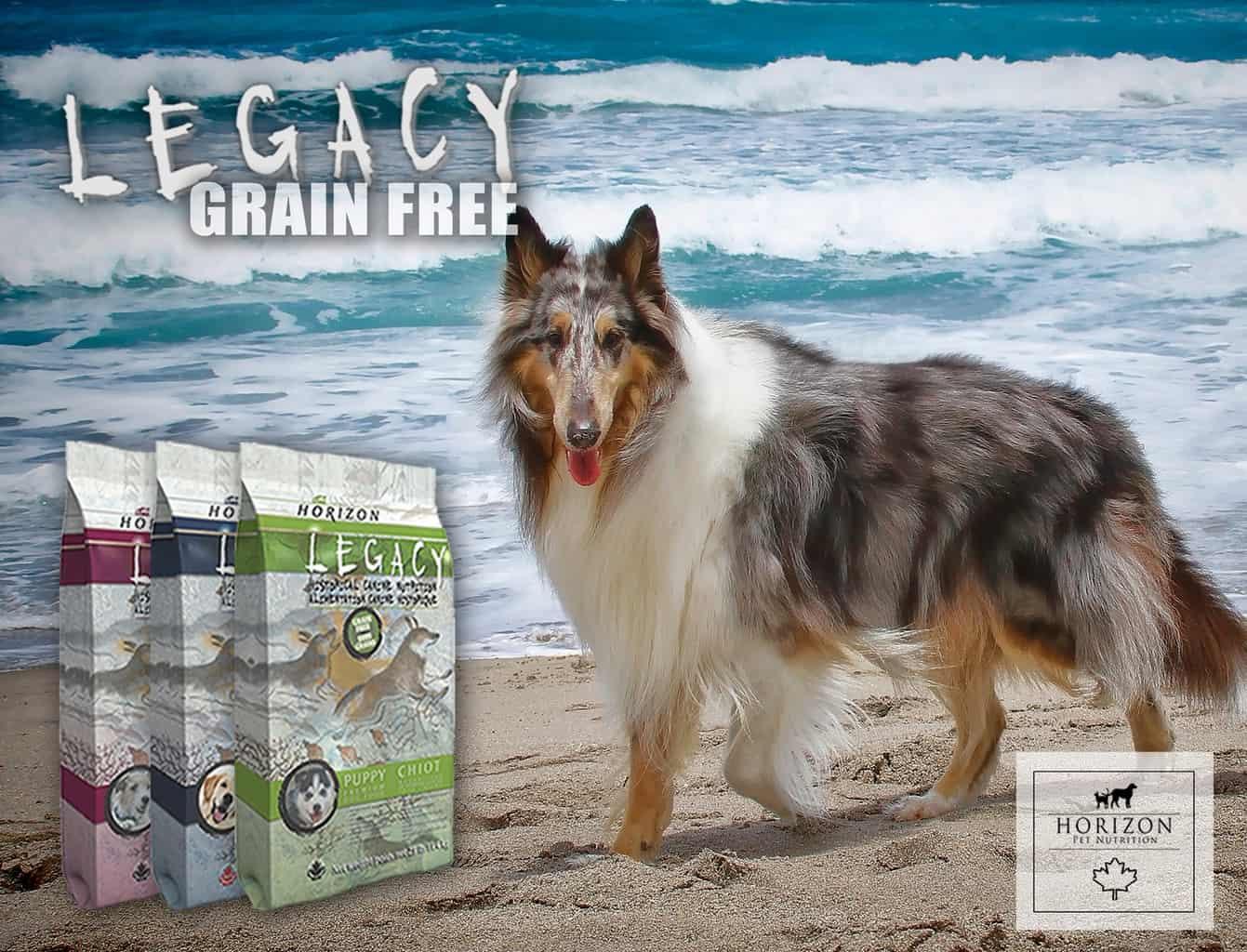 Horizon Dog Food Review 2021: Top Canadian Maker of Exemplary Pet Foods? 19
