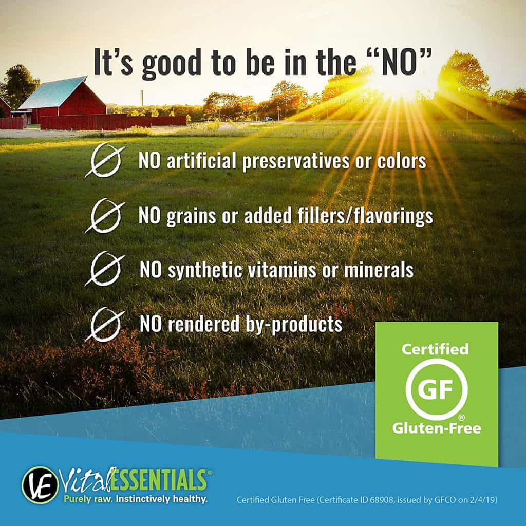 Vital Essentials Dog Food: 2021 Reviews, Recalls & Coupons 3