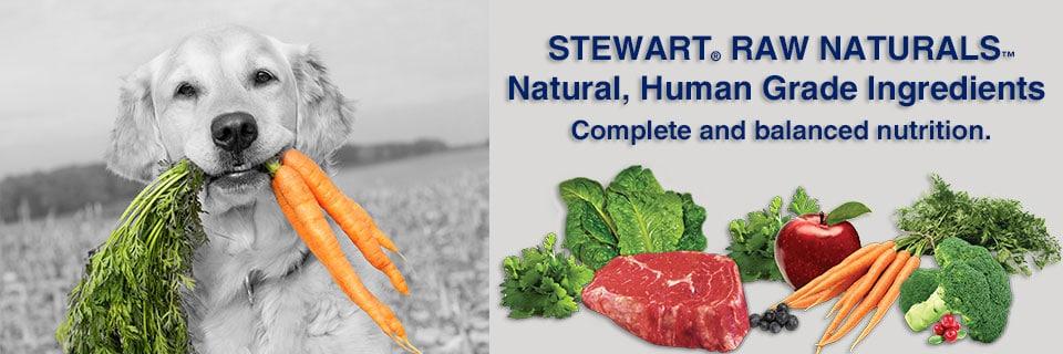 Stewart Raw Naturals Dog Food Review