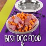 8 Best Dog Food and Water Bowl Mats in 2021