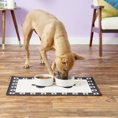 8 Best Dog Food and Water Bowl Mats in 2021 17