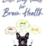 10 Best Dog Foods for Brain Health in 2021