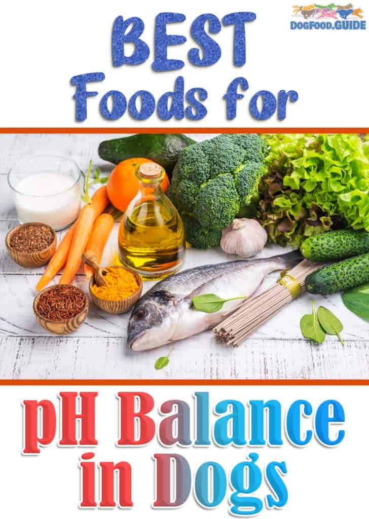 Best Foods For pH Balance in Dogs