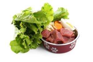 10 Best Dog Foods for Bladder Stones in 2021 30