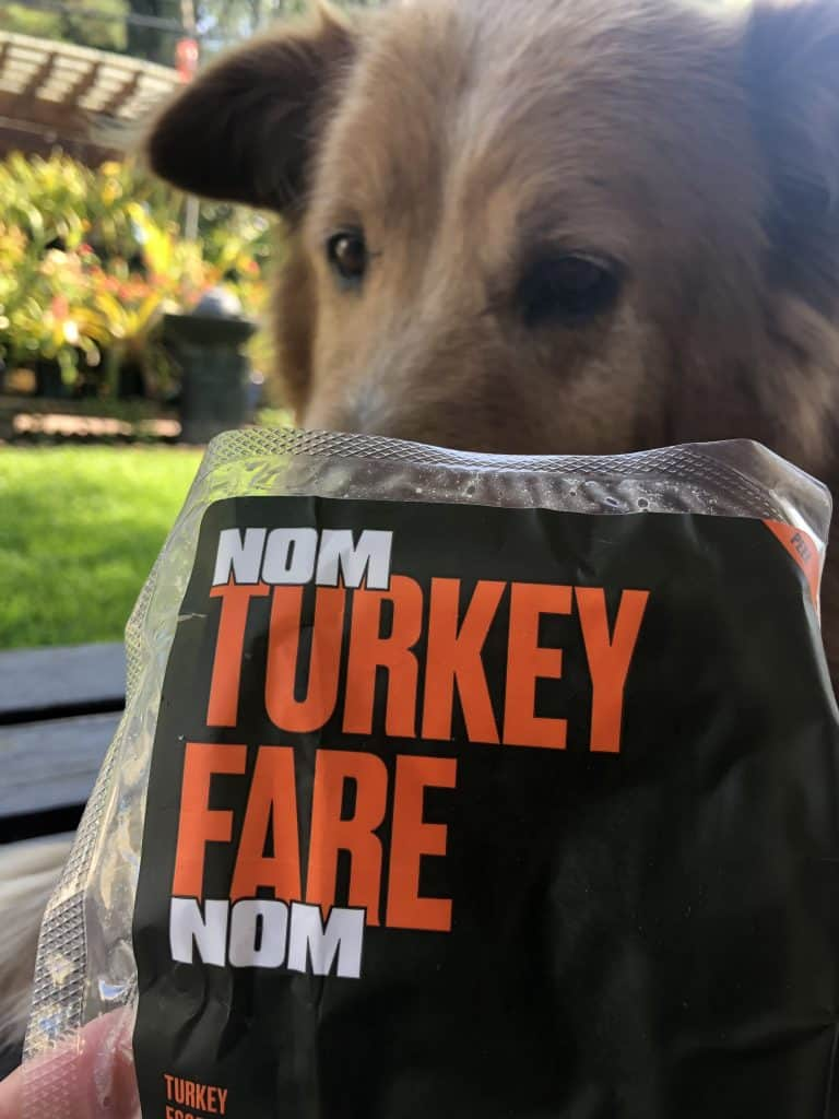Nom Nom (Formerly NomNomNow) Dog Food Review: Best Human Grade Dog Food? 2