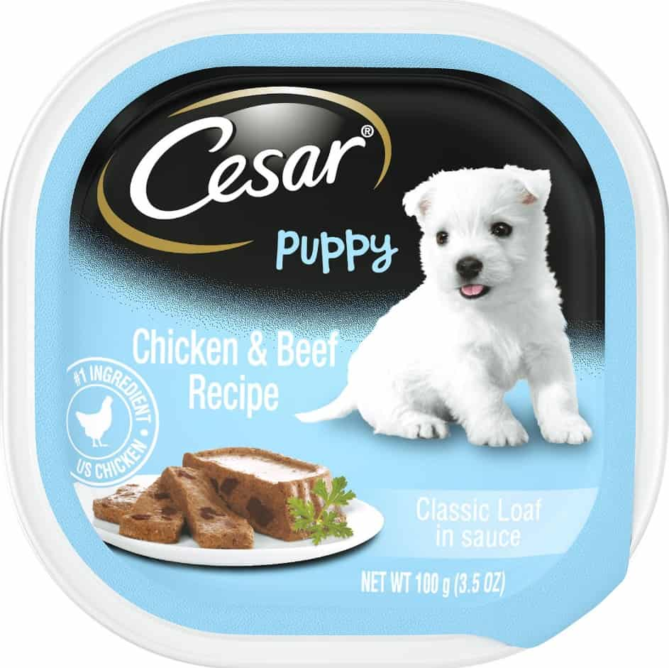 2020 Cesar Dog Food Review: Tasty Meals For Your Little Buddy 17