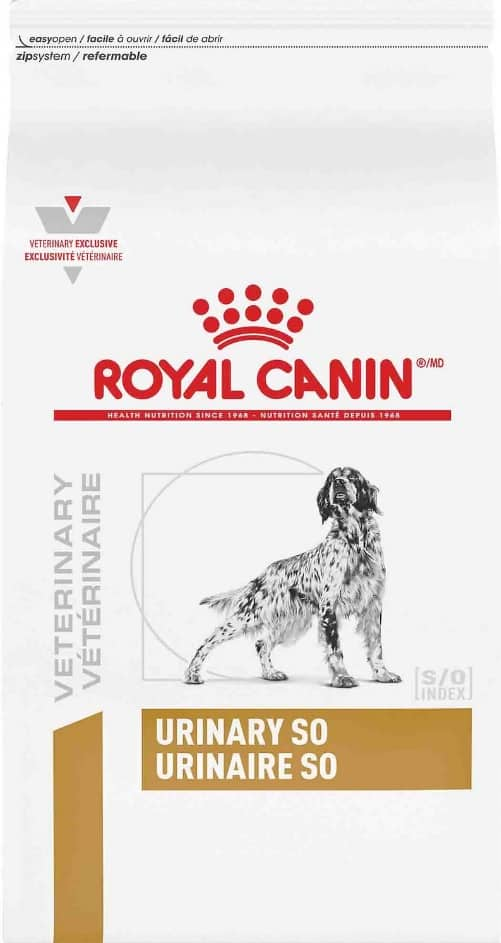 2020 Royal Canin Dog Food Review: Tailored Nutrition For Your Pup 10