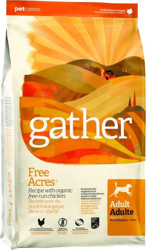 Gather Dog Food: [year] Reviews, Recalls & Coupons 2