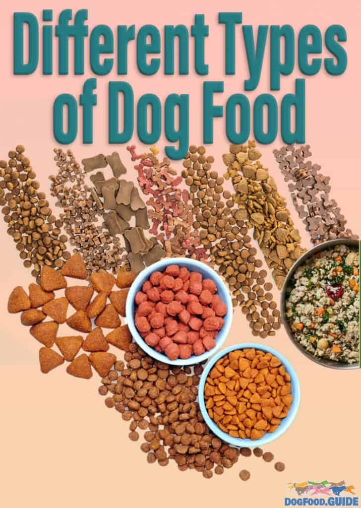 Different Types Of Dog Food