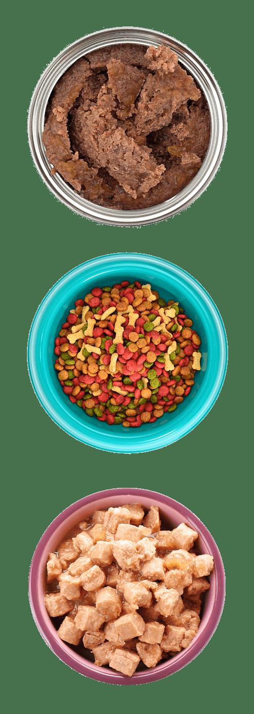 Dog Food Types 2