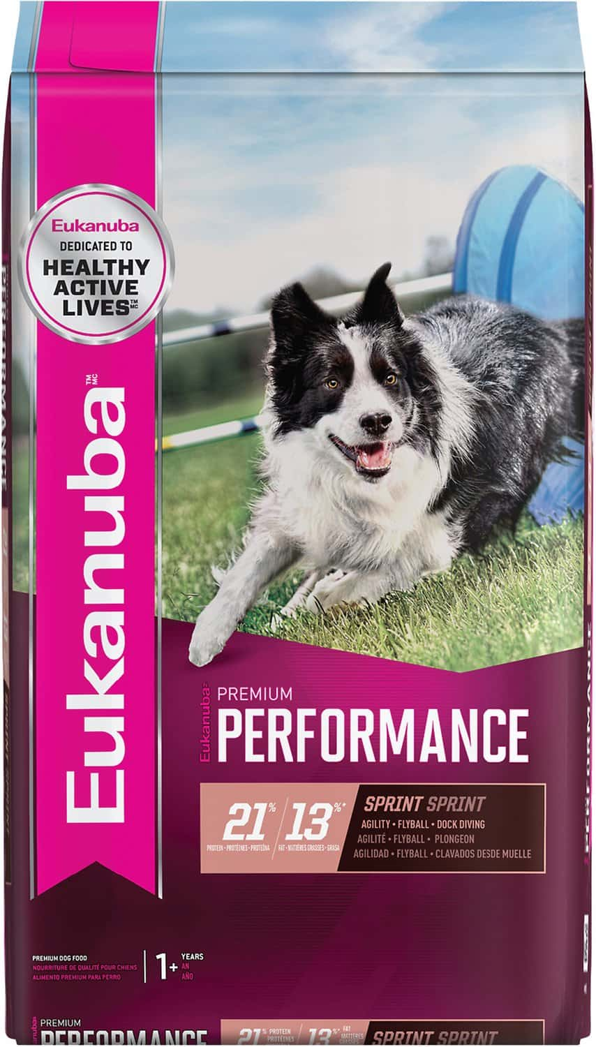 Eukanuba Dog Food: 2020 Review, Recalls & Coupons 11