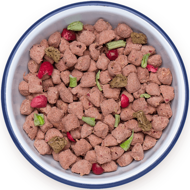 Best Dry Dog Food : Top Kibble Brands of 2020 Reviewed & Rated 3