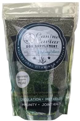 Canine Caviar Dog Food Review [year]: First & Best Alkaline Pet Food? 34