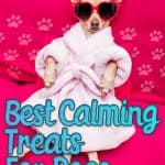 Best Calming Treats For Dogs: [year] Reviews, Recommendations & Tips