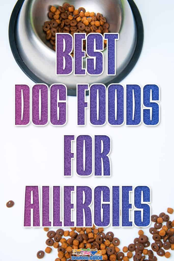 Best Dog Food For Allergies