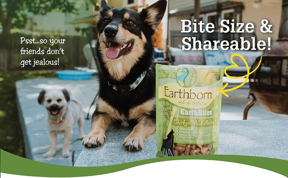 Earthborn Holistic Dog Food Review [year]: Love Your Pet, Love Your Planet 34