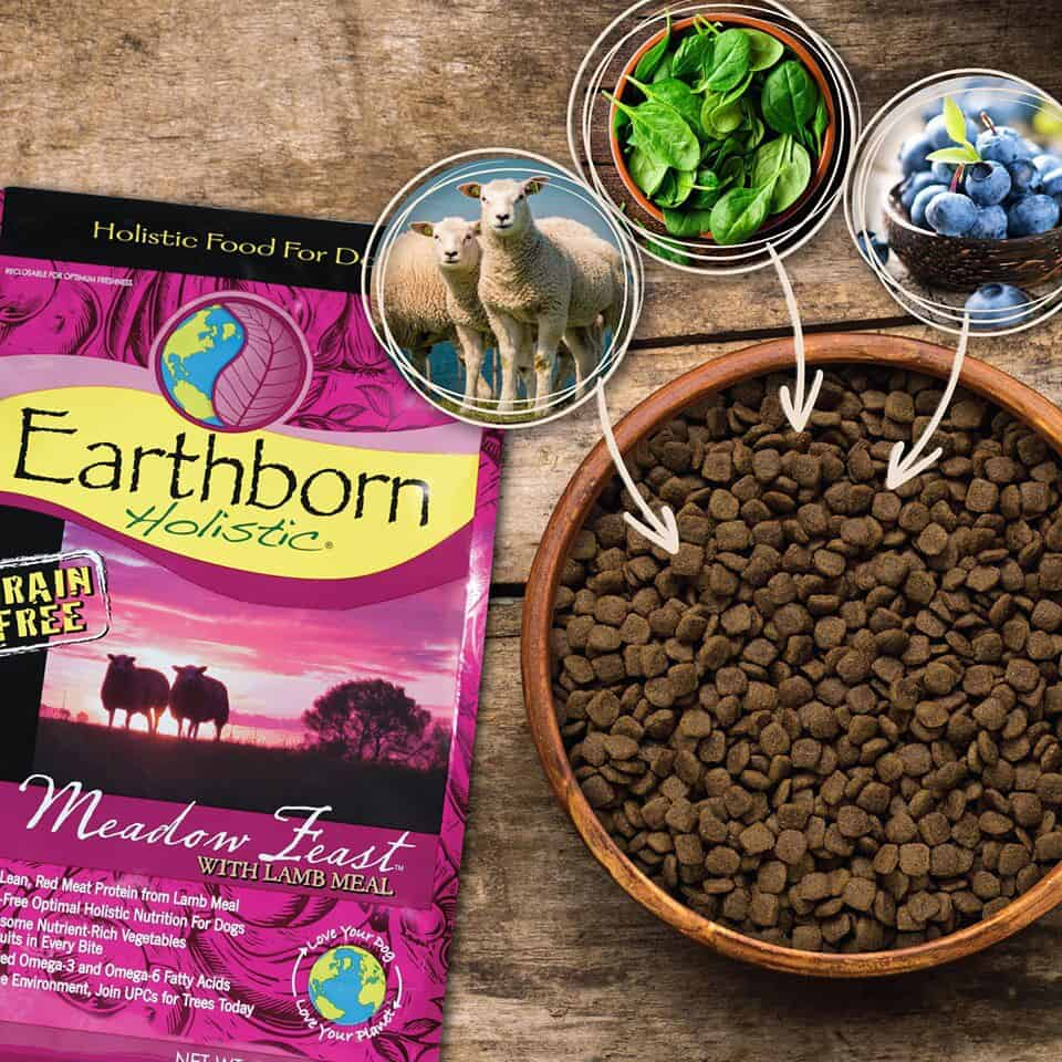 Earthborn Holistic Dog Food Review [year]: Love Your Pet, Love Your Planet 17
