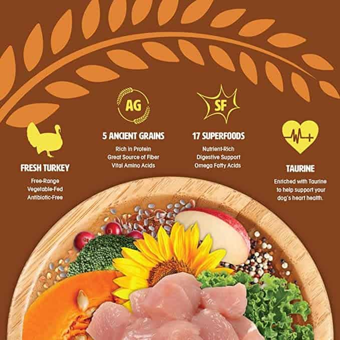 Earthborn Holistic Dog Food Review [year]: Love Your Pet, Love Your Planet 23