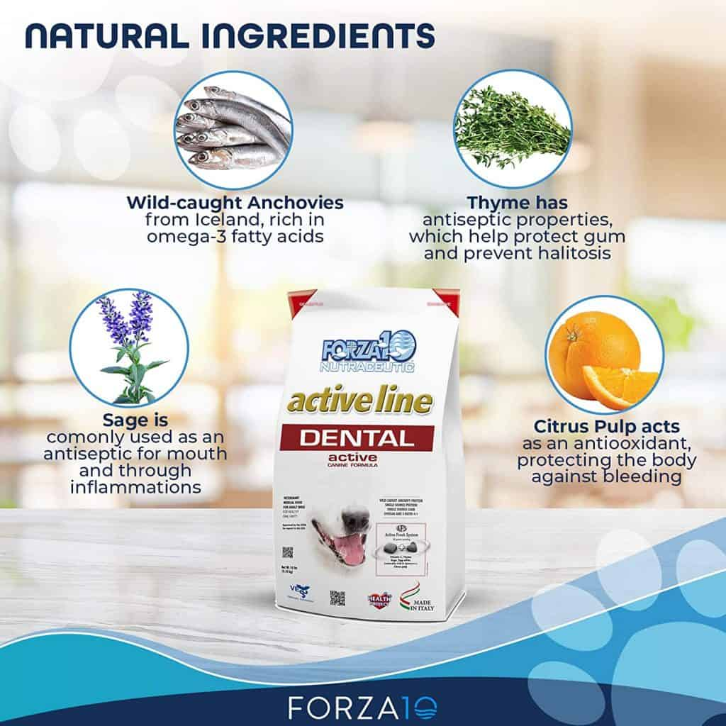 Forza10 Dog Food Review [year]: Best Natural Alternative to Medicine? 16