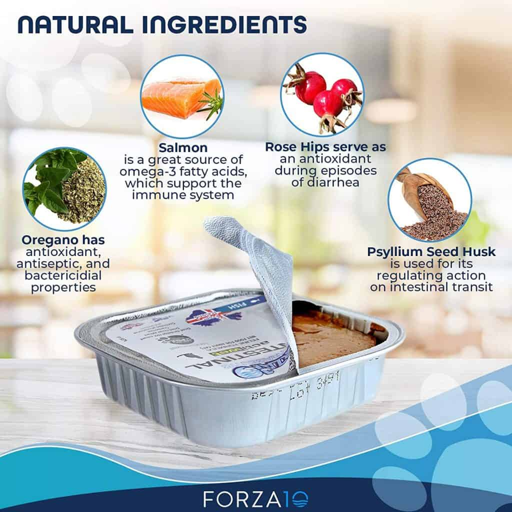 Forza10 Dog Food Review [year]: Best Natural Alternative to Medicine? 30