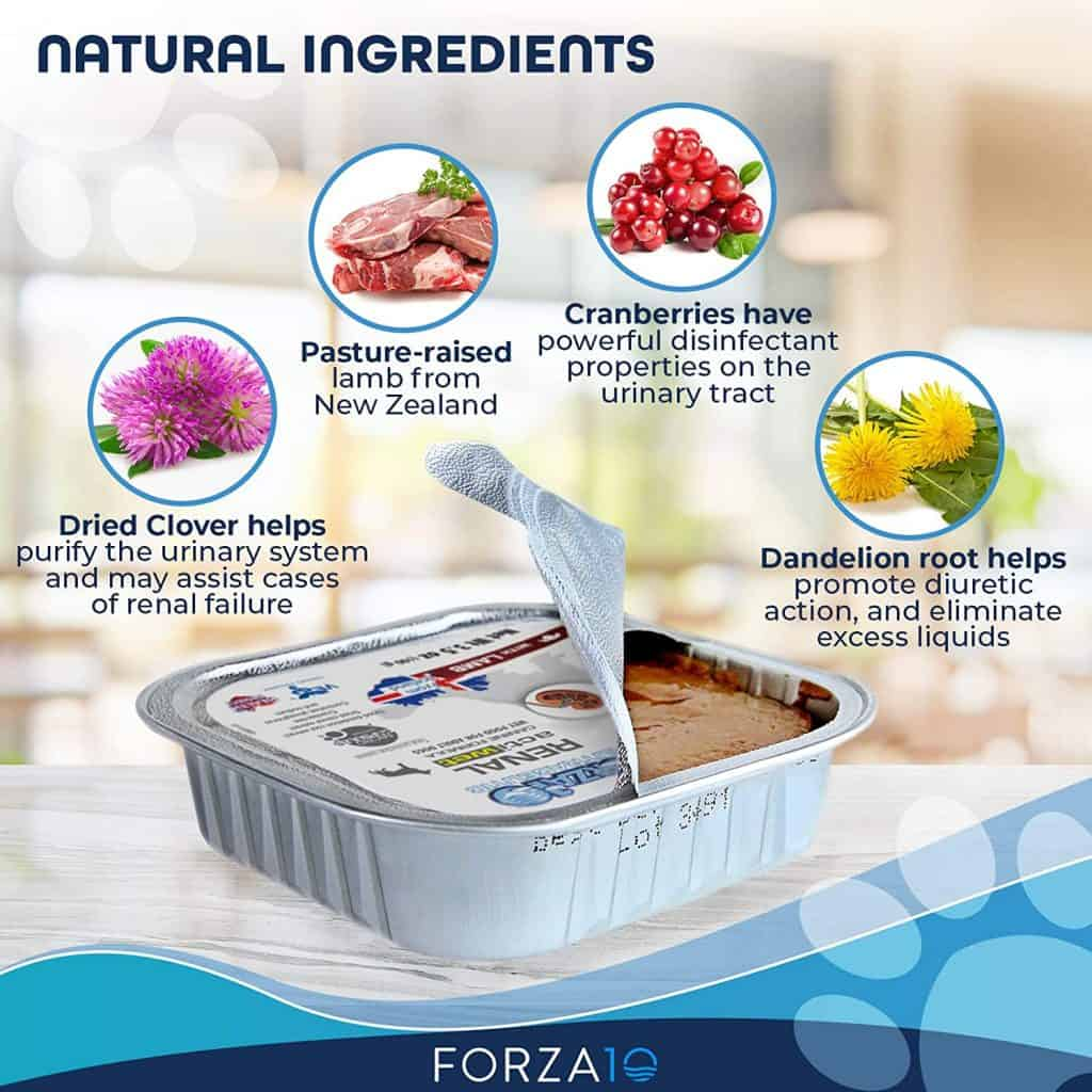 Forza10 Dog Food Review [year]: Best Natural Alternative to Medicine? 28