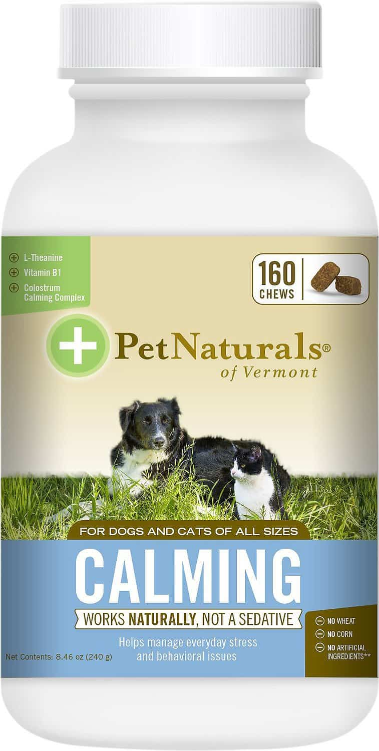 Best Calming Treats For Dogs: 2021 Recommendations, Reviews & Tips 22