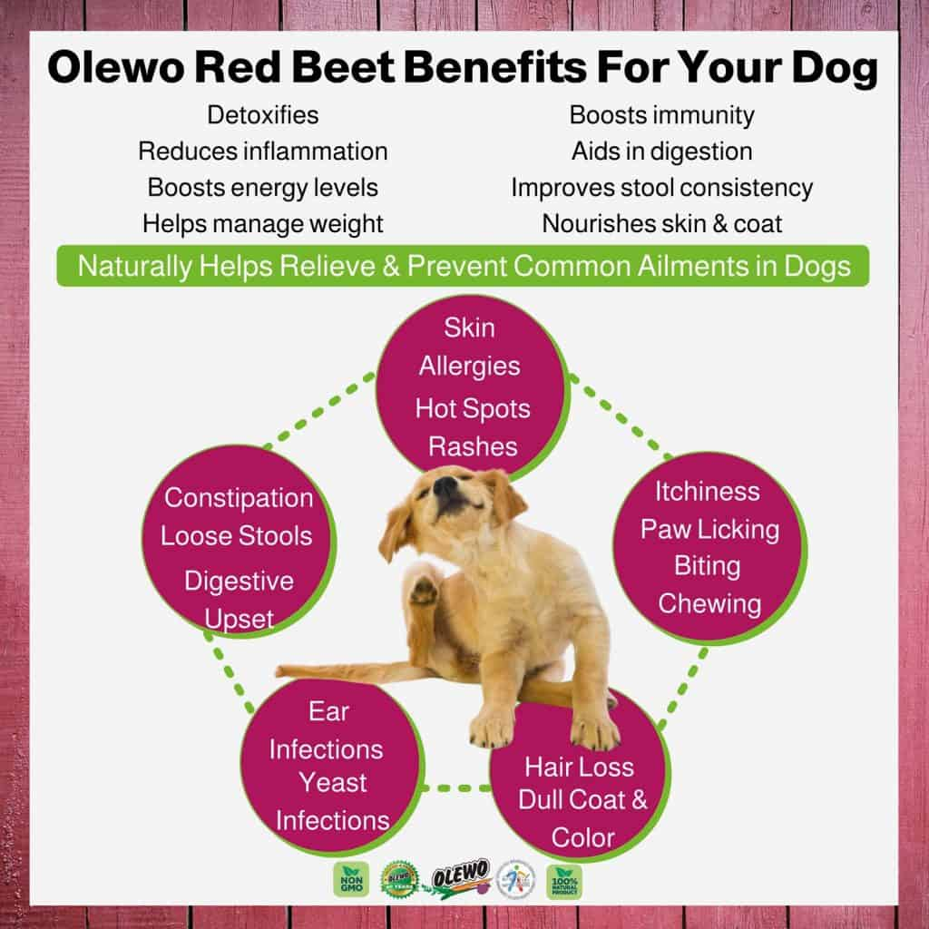 olewo red beets