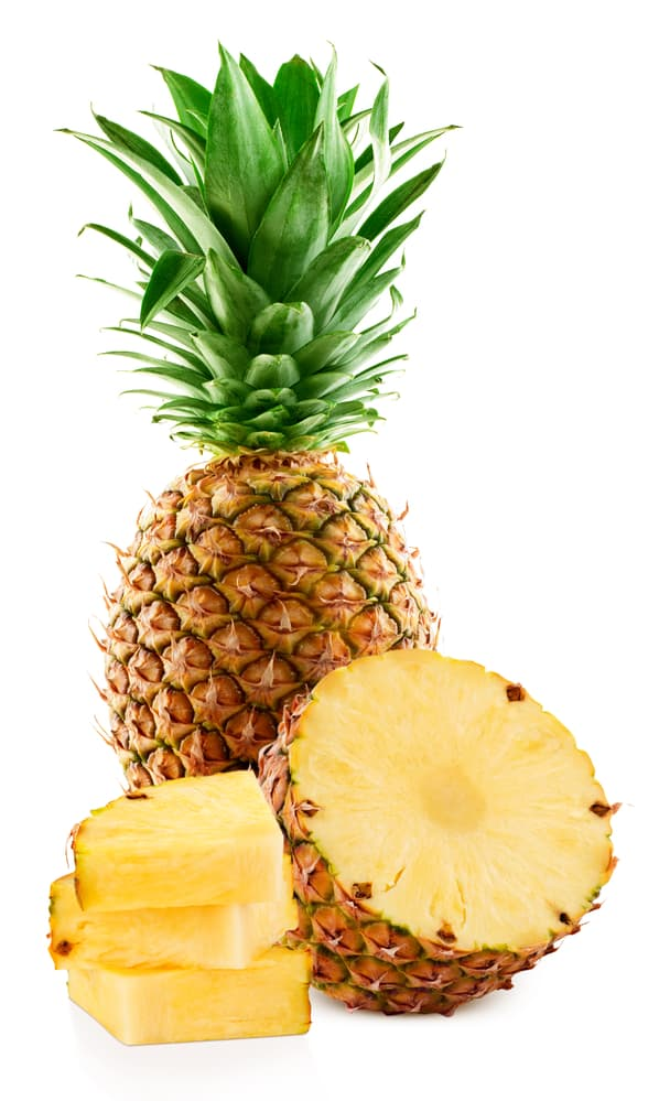 Can Dogs Eat Pineapple? The Pros and Cons of Pineapple for Dogs 1