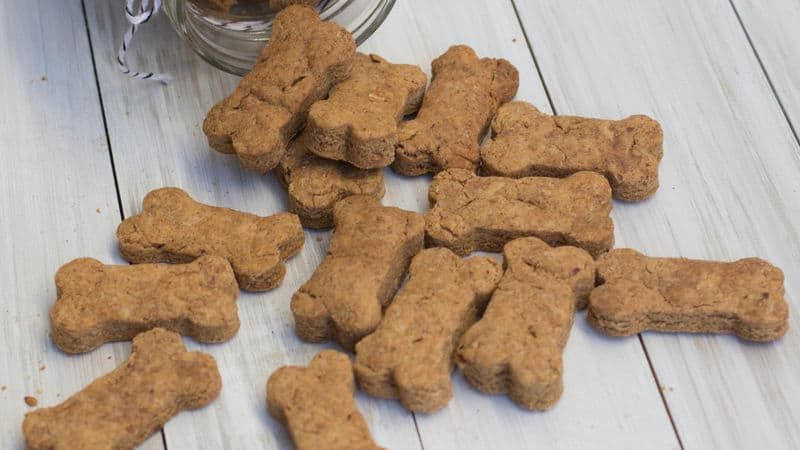 Can Dogs Eat Almonds? Are You Putting Your Dog's Life At Risk? 3