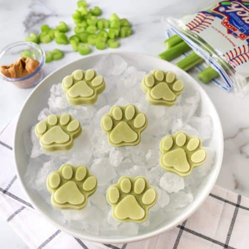 Can Dogs Eat Celery? Is It Also Healthy For Dogs? 4