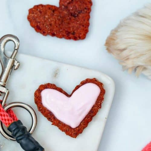 Can Dogs Eat Beets? Are Beets Good for Dogs? 4