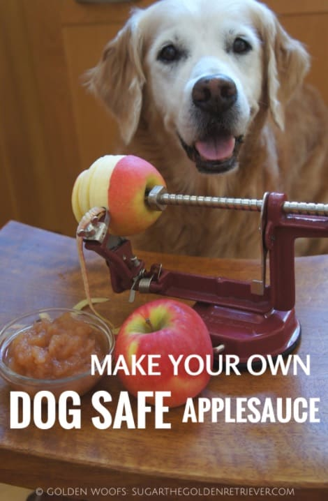 Can Dogs Eat Applesauce? Is it for the Best or Worst? 3