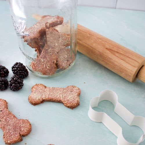 Can Dogs Eat Blackberries? Are Blackberries Toxic to Dogs? 6