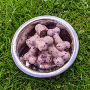 Can Dogs Eat Ice Cream? What Are Some Alternatives to Feeding Ice Cream in Dogs? 4